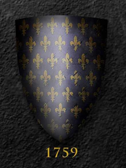 Darksword Armory Medieval Field Combat Shield # 1759