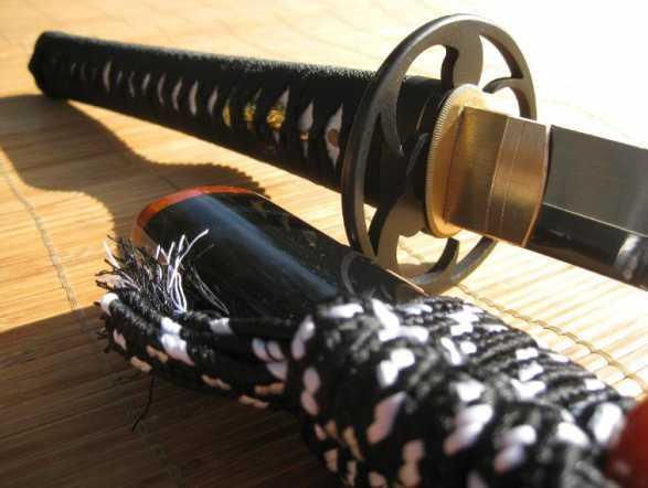 Ronin-Katana-Dojo-Pro-model1-pic1