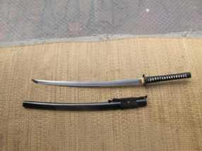 Ronin-Katana-Dojo-Pro-model24-pic3