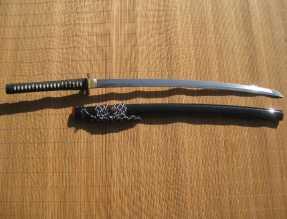 Ronin-Katana-Dojo-Pro-model4-pic3