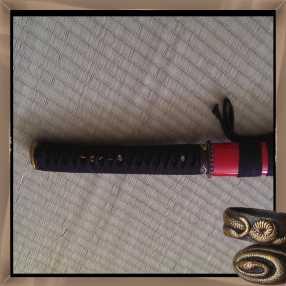 snakes4.jpg